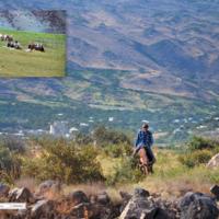 Pasterze - Armenia