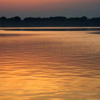 Złoty zalew